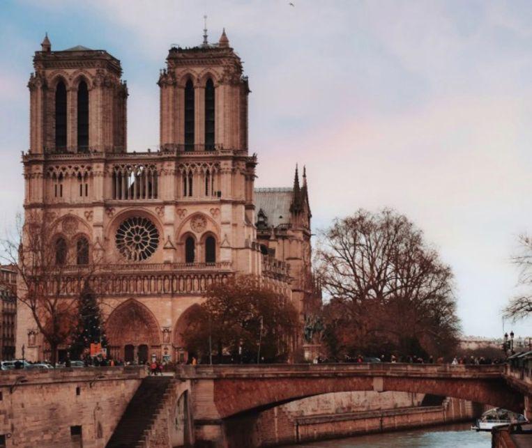 De Notre Dame Kathedraal in Parijs.