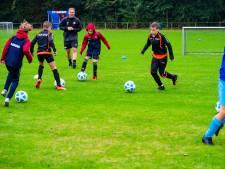 Hapert trapt af voor trainingen Kempisch Voetbal Collectief