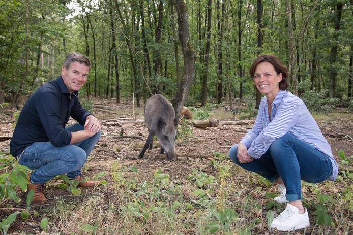 De Puttense recreatieondernemers Herman Kool van De Rusthoeve en Daniëlle Geurtsen van 't Ravenest in het bos, terwijl er een wild zwijn dichtbij hen voedsel zoekt: ,,De recreatiesector in Putten groener maken is een heel goed voornemen. Dit biedt kansen.''