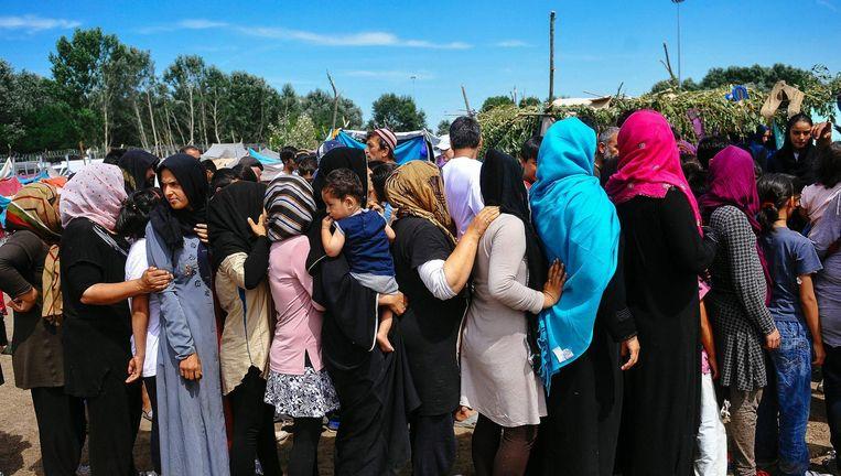 Vluchtelingen bij de Servisch-Hongaarse grens. Beeld afp