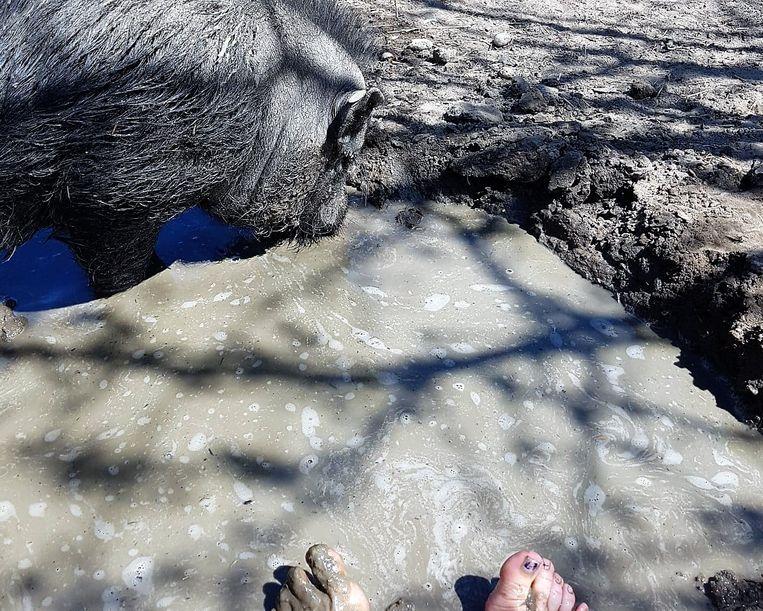 In beleefhoeve Pantouf nemen ze een modderbadvoetenbad samen met Guus.