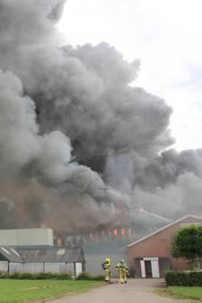 Grote brand in varkensschuur met 20.000 varkens: meeste dieren dood