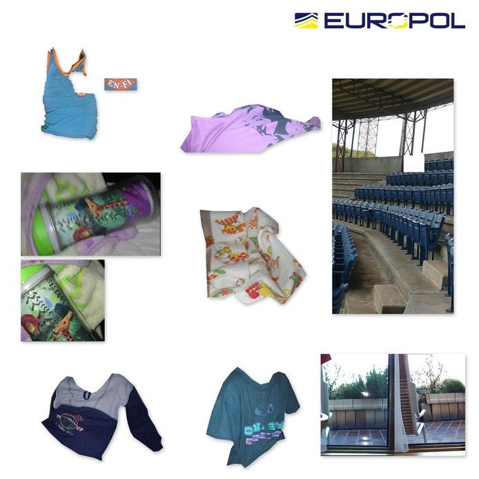 Europol heeft hulp nodig in onderzoeken naar kinderporno.