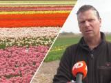 Wat gebeurt er nu met al die mooie bloemen?