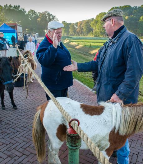Avri, Roparunners en Spark of Sanity van de partij op Ponymarkt Brakel