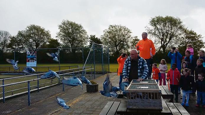 In een vooruitstrevend dorp als Ritthem liet de oranjevereniging twee jaar geleden al duiven los in plaats van ballonnen op Koningsdag.