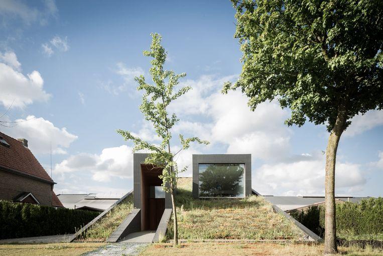 Architectenbureau Oyo tekende deze woning met een gevel van gras.