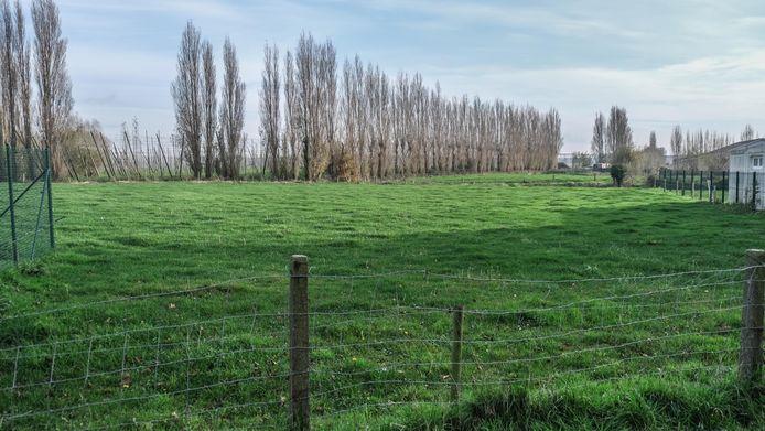 De nieuwe begraafplaats komt er op een stuk terrein op 150 meter van het bestaande kerkhof.