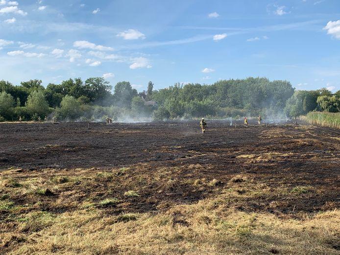 Brand op weiland in Gemonde
