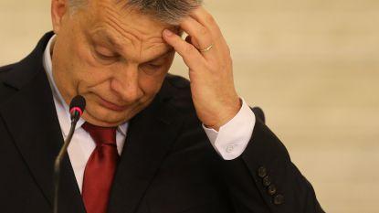 Taant de macht van Viktor Orbán? Partij Hongaarse premier verrassend verslagen in lokale verkiezing