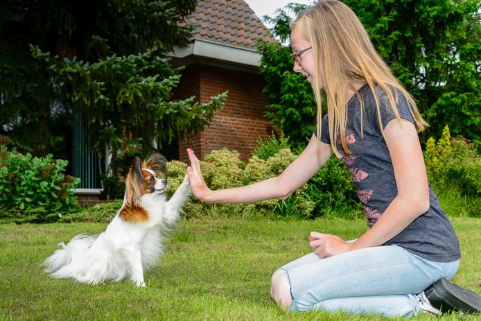 Jasmijn van Vlimmeren is in Venlo met haar hondje Free Wifi kampioen van Nederland geworden in de klasse junior agility.