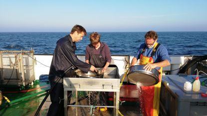 Londerzeelse docent voert onderzoek op marineschip Belgica