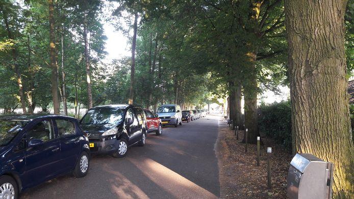 Parkeeroverlast aan de Valkenbergweg in Wijthmen. Bezoekers van de Wijthmenerplas parkeren hier tegen de regels in hun auto, tot ergernis van de buurt.