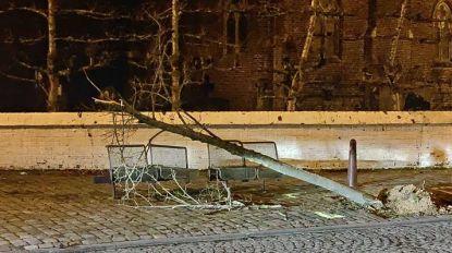 Beschonken bestuurster rijdt tegen geparkeerde wagen en boompje in Dorpsstraat
