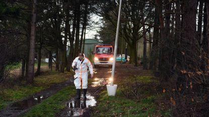 Parket onderzoekt brandstichting aan chalet