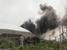 Grote brand in Britse dierentuin: bezoekers en dieren geëvacueerd