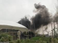 Grote brand uitgebroken in Britse dierentuin Chester Zoo