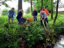 De Staaltjes: een juweeltje van een park tussen de Dijken in Roosendaal