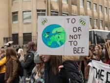 Leerlingen uit Rivierenland mogen, mits met toestemming, spijbelen voor het klimaat