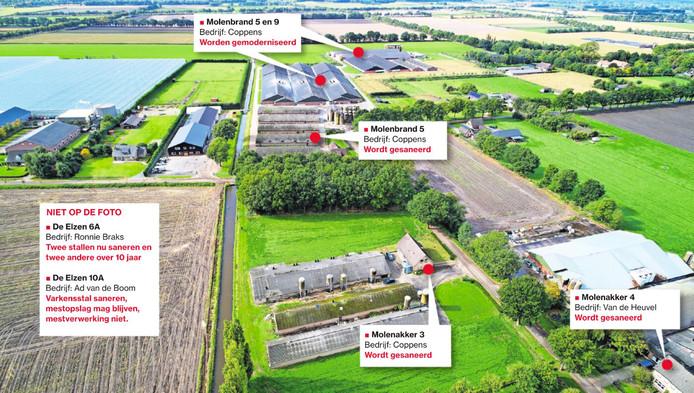 Luchtfoto van De Elzen in Boekel met alle varkensbedrijven.