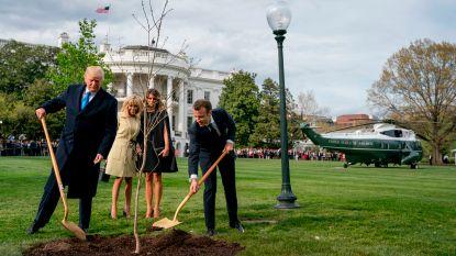 Waar is de boom van Trump en Macron naartoe?