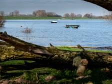 Blauwalg in het Weurtse Grindgat: even niet zwemmen en vissen