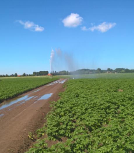 NVWA controleert aardappeltelers met helikopters