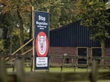 'Stop megastallen'; buurt in actie tegen uitbreiding Berlicumse varkensboeren