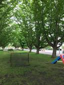 De groene buurt heeft veel ruimte om bijvoorbeeld een balletje te trappen. Er wonen veel jonge gezinnen.