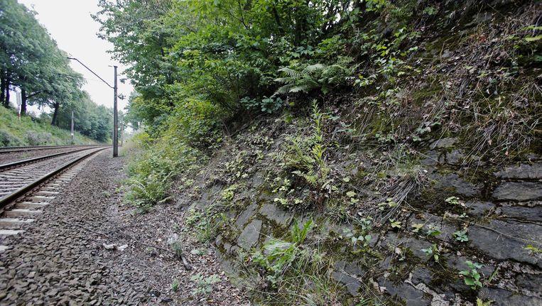 De mogelijke locatie van de goudtrein in het Poolse stadje Walbrzych.