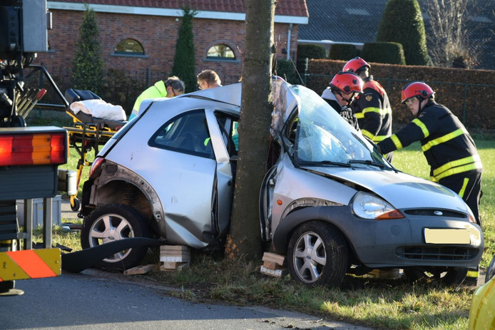 De auto is tegen de boom gebotst op de Bornhemweg in Oudenbosch.