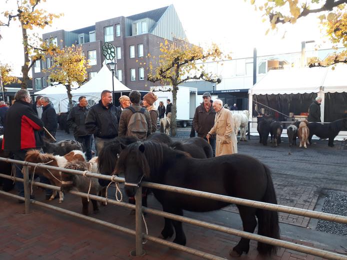 Pony's worden verhandeld op de Leste Mert.