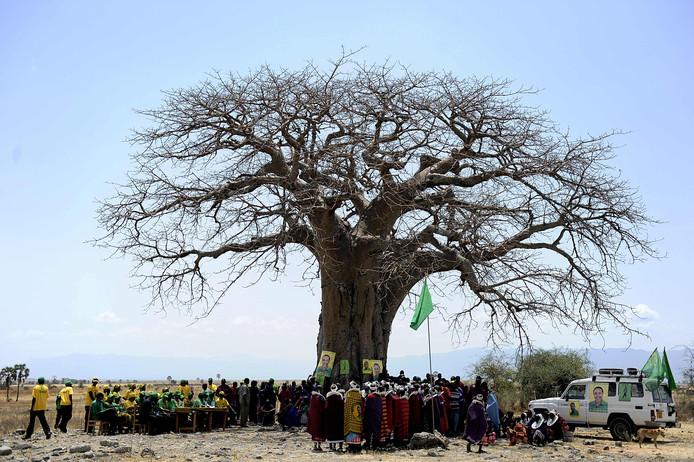 Een baobab in Tanzania.