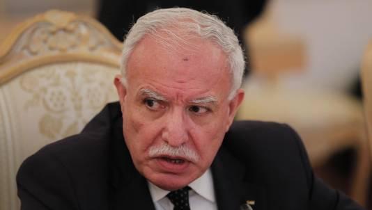 Riyad al-Maliki.
