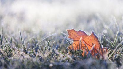 Zonnige dag met schraal windje, ook de rest van de week mooi maar koud weer