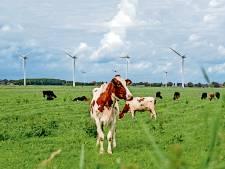 Lijsttrekkers in debat: komen er windmolens in Landerd?