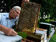 Belemmeringen voor bijenhouden opgeheven in de Betuwe