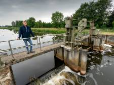 Reusachtige vissen en zeldzame planten duiken op nu riviertjes weer kronkelen