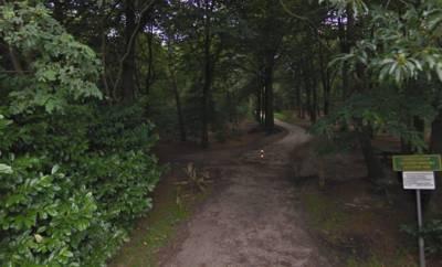 Prinsenbeek heeft eerste 'ommetje' met wandelroute Heidreefke door De Hooiberg