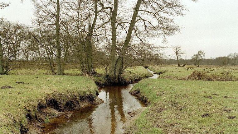 Ook Anloo dingt mee in de verkiezingen om het 'mooiste natuurgebied van Nederland'. Beeld null