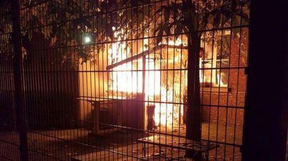 Metershoge vlammen tegen gevel Academie
