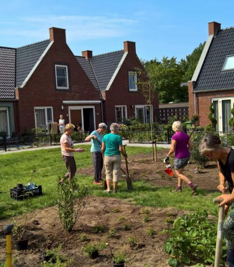 Knarrenhof: Burgerinitiatief hofjes in Etten-Leur