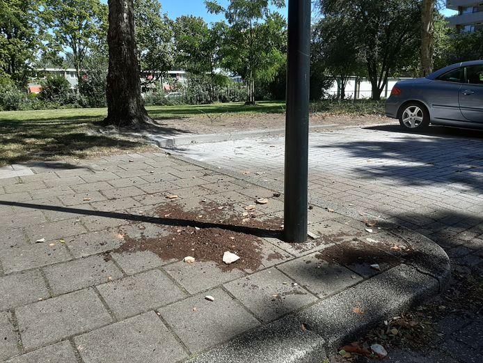 De stille getuigen van het incident aan de Aristotelesstraat in Apeldoorn.