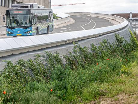 Busbrug in Zwolle wordt vanaf nu gerepareerd, kans op nieuwe scheuren is klein