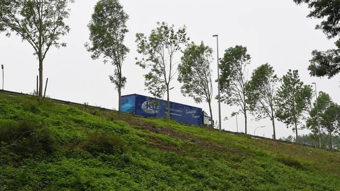 Groen wil CO2 en fijnstof bufferen met bomen en houtkanten