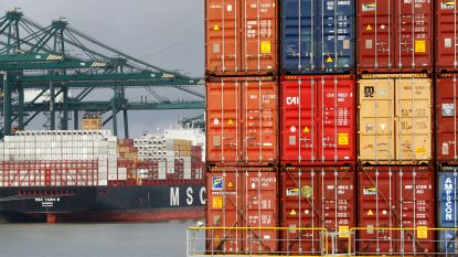 Nieuw 'record' voor Antwerpse haven: meer dan 50 ton cocaïne onderschept in 2018