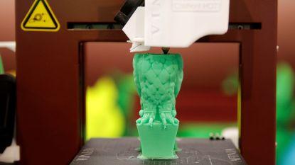 Basisschool De Bij krijgt subsidie voor aankoop 3D-printer