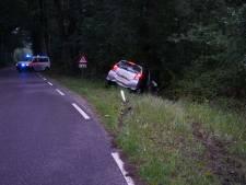Auto tegen boom in Dalmsholte: één gewonde