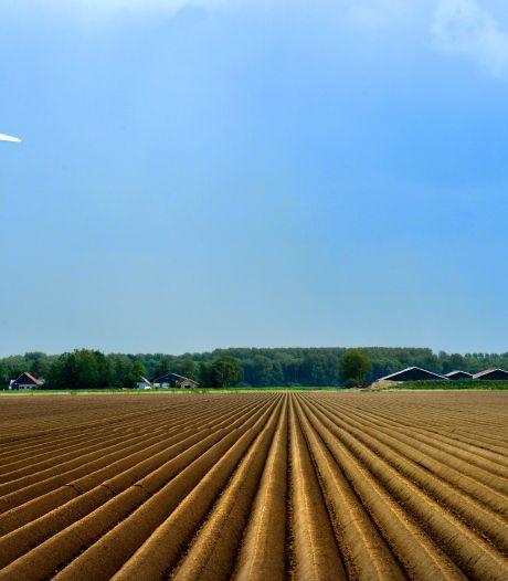 Pure Energie uit Enschede bouwt 20 mega-windmolens in Flevoland: grootste project ooit