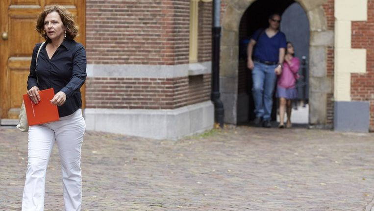 Minister van Volksgezondheid, Welzijn en Sport Edith Schippers Beeld anp